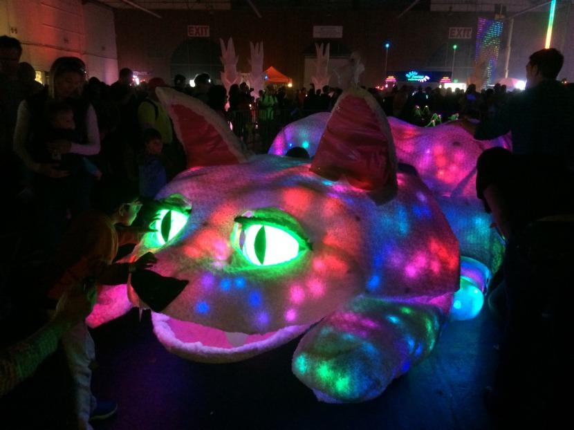 Maker Faire Illuminated Cat